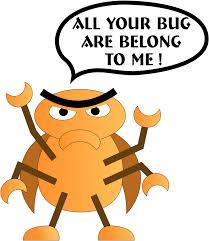computerbug